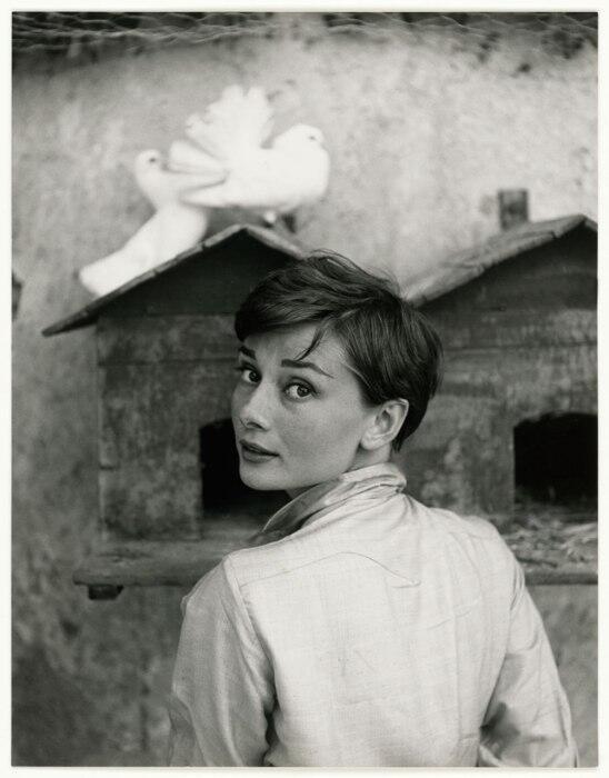 أودري هيبورن -  1955