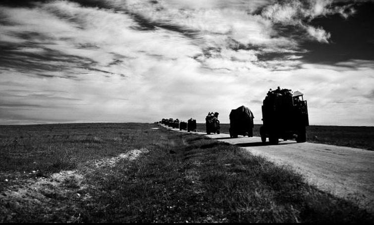 شاحنات تحمل فلسطنيين باتجاه  صحراء غزة 1948
