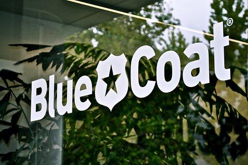 blue-coat-office