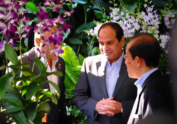 السيسي أمام زهرته -الصوةر من مصراوي