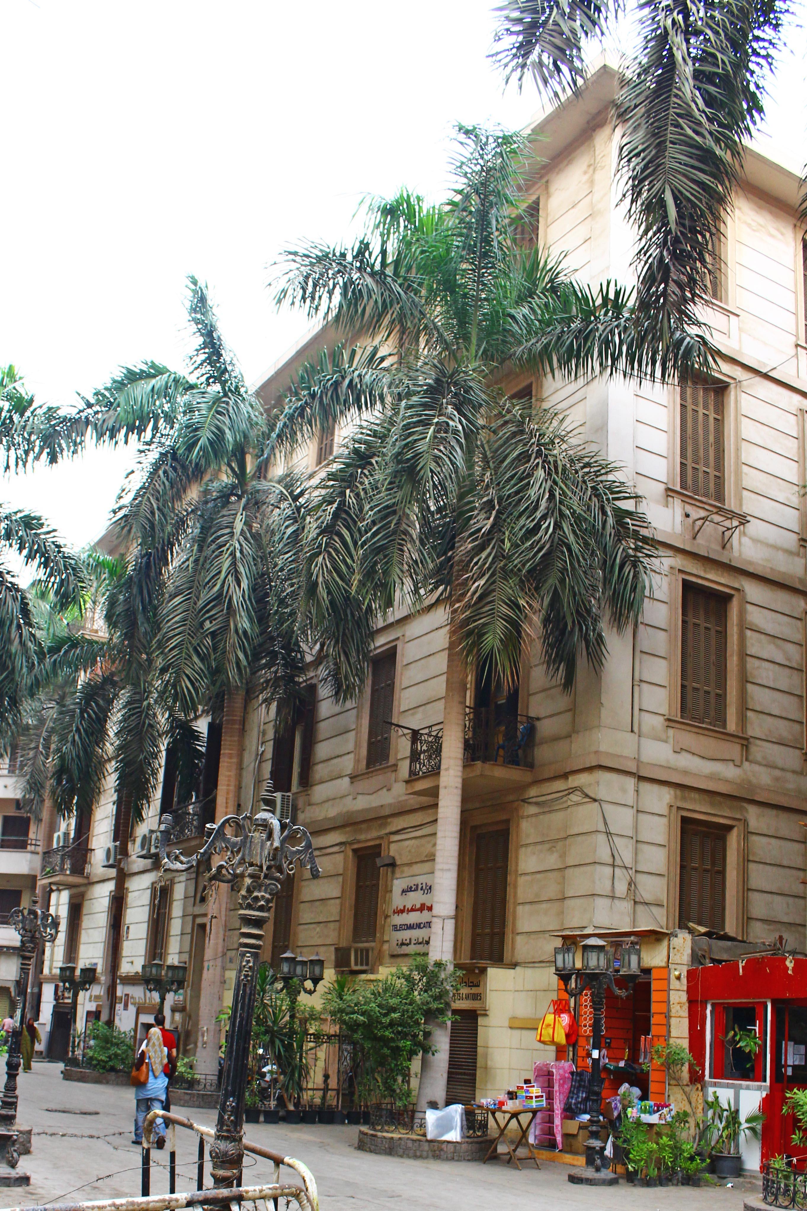 عمارة محمد باشا علوي الذي سمّي على اسمه شارع علوي