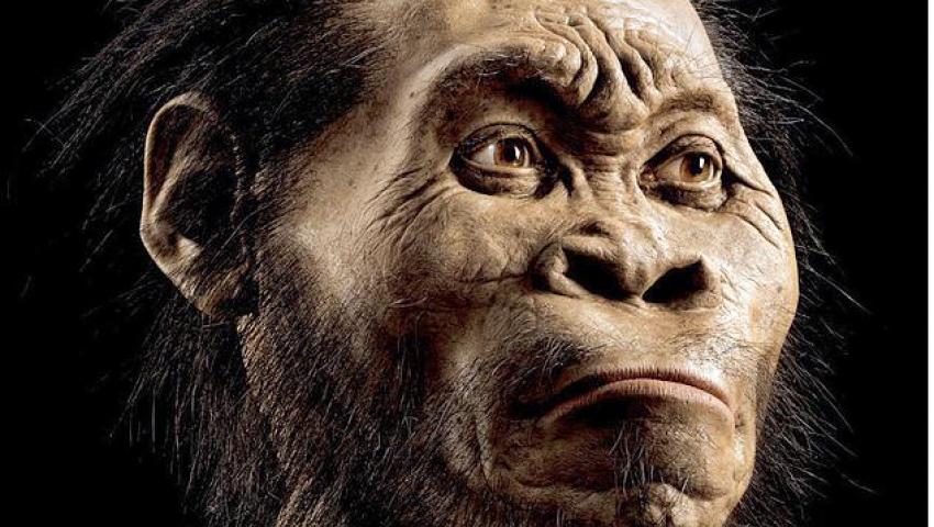 صورة مفترضة لشكل الإنسان البدائي من مجلة ناشيونال جيوجرافيك